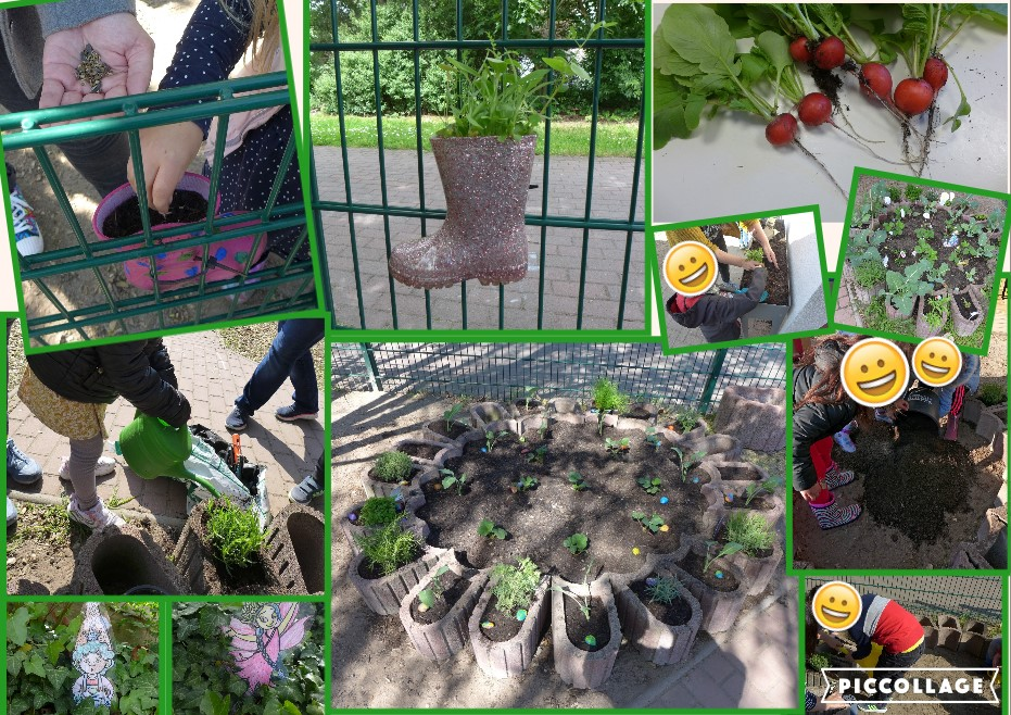Unser Gartenprojekt ist gestartet!