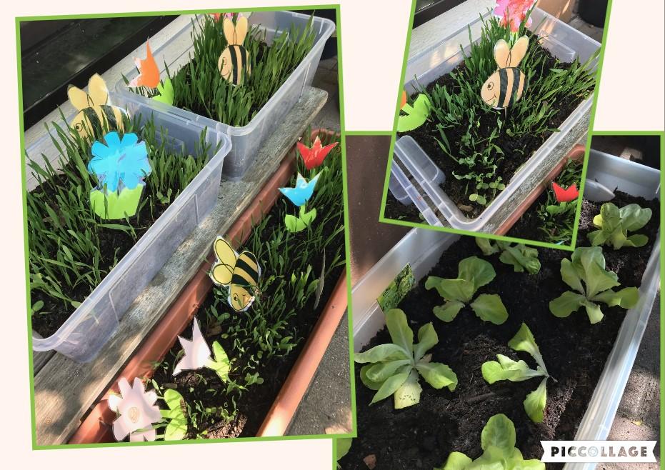 Überall wird es grün durch Pflanzen und Blumen!
